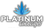 Platinum Landscapes